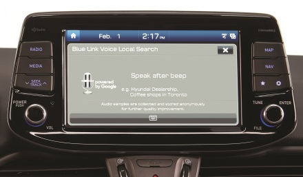 Hyundai_BlueLink Technology_1003 JPG.jpg